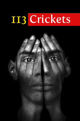 113 Crickets